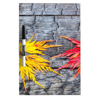 Yellow and red maple leaf on black burnt wood dry erase board