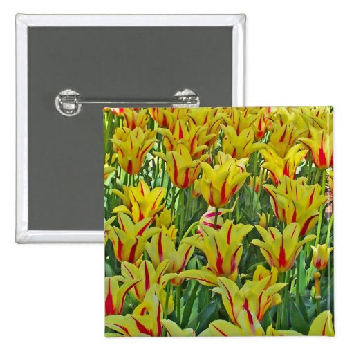 Yellow And Red Tulips... Button