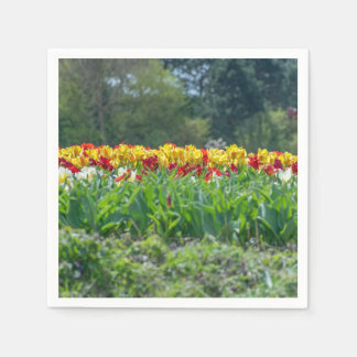 Yellow and red tulips paper napkins