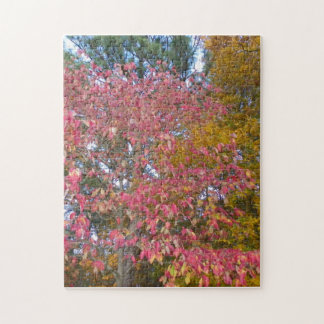 Yellow and Reds of Fall Puzzle