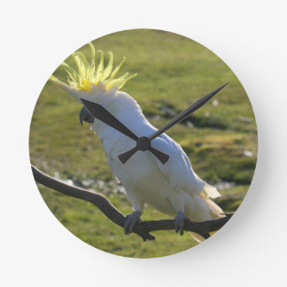 Yellow and White Cockatoo Parrot Clock