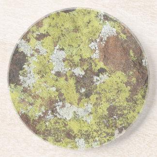 Yellow and White Lichen on Sandstone Natural Camo Coaster