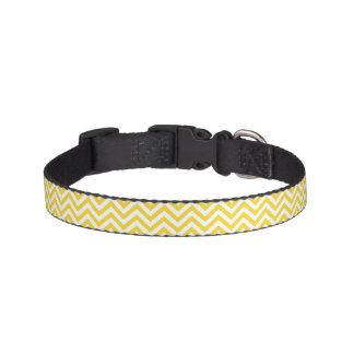 Yellow and White Zigzag Stripes Chevron Pattern Pet Collar