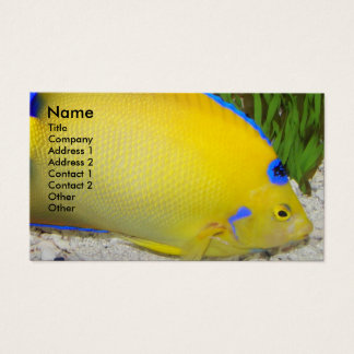 Yellow Angelfish Photo Business Card