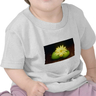 yellow Apples and flower on barnboard flowers Tee Shirts