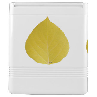 Yellow Aspen Leaf #5 Cooler