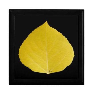 Yellow Aspen Leaf #5 Gift Box