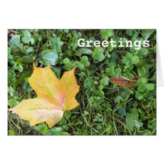 Yellow Autumn Leaf in Clover Greeting Card