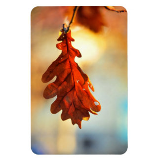 Yellow autumn leaf rectangular magnet