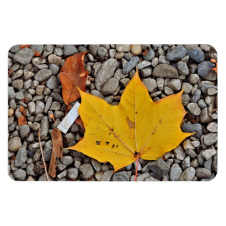 Yellow autumn leaf magnet