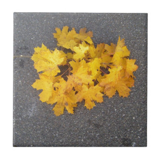YELLOW AUTUMN LEAVES BRANCH SMALL SQUARE TILE