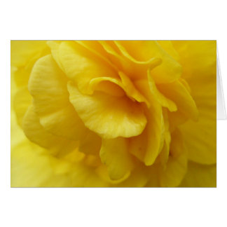 Yellow begonia notecard