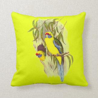 Yellow-Bellied Parakeet Cushion