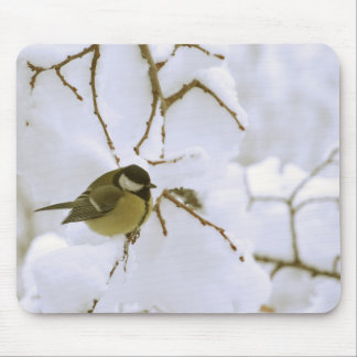 Yellow bird in the snow Photo Mousepad