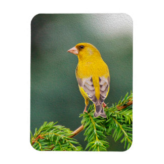 Yellow Bird on Branch Rectangular Photo Magnet