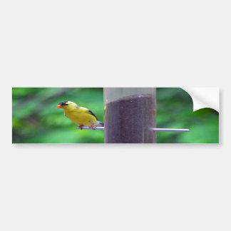 Yellow bird on post bumper sticker