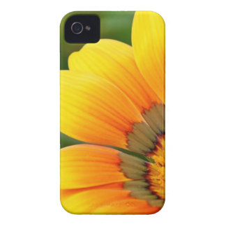 Yellow Bloom Case-Mate iPhone 4 Cases