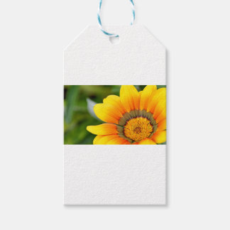 Yellow Bloom Gift Tags