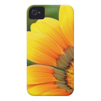 Yellow Bloom iPhone 4 Case