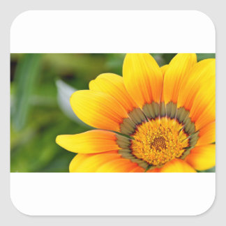 Yellow Bloom Square Sticker