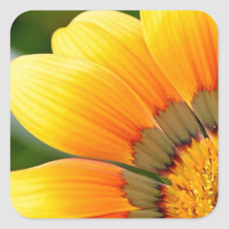 Yellow Bloom Square Sticker