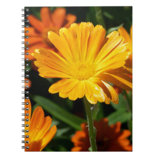 Yellow Blossoms Flowers Art Peace Love Destiny Notebook