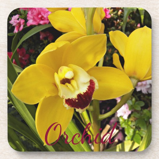 Yellow Boat Orchid Floral Coasters
