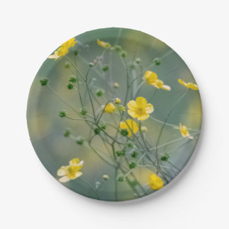 Yellow buttercups paper plate