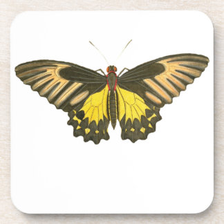 Yellow Butterfly Drink Coaster