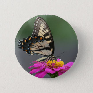 Yellow Butterfly on Pink Zinnia Flower 6 Cm Round Badge