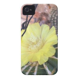 Yellow cactus flower iPhone 4 Case-Mate cases