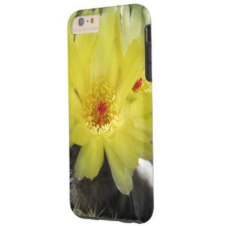 Yellow Cactus Flower iPhone 6 Plus Cell Phone Case
