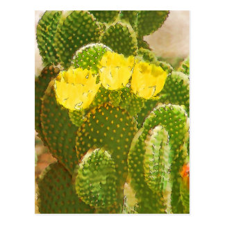 YELLOW CACTUS FLOWERS POSTCARD