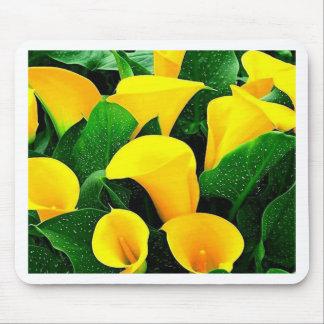Yellow Calla Lilies Mouse Pad