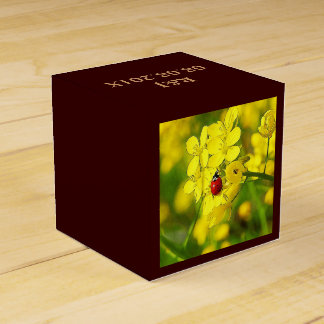 Yellow Canola Flower Good Luck Red Ladybug Favour Box