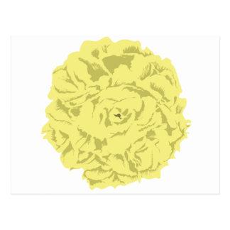 yellow carnation flower postcard