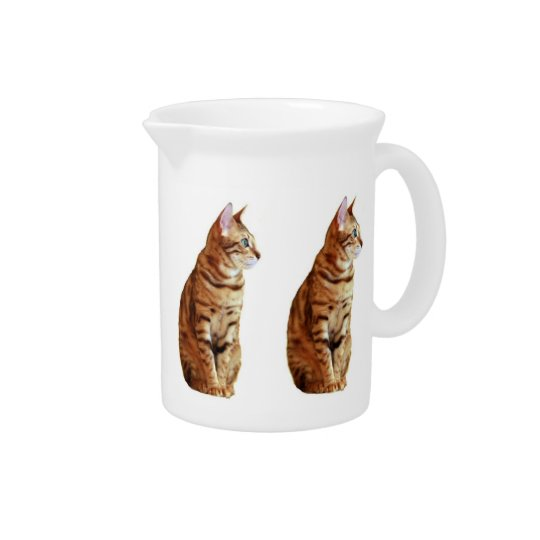 Yellow Cat Drink Pitchers