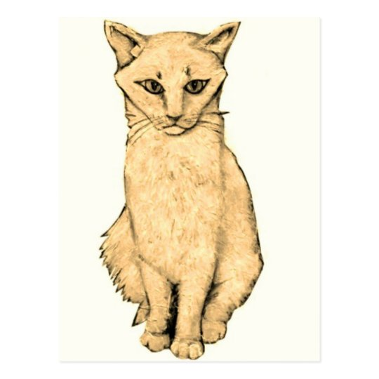 Yellow Cat Postcard