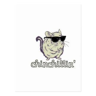 Yellow Chinchillin Chinchilla Postcard