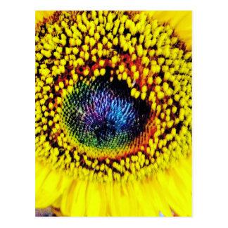 Yellow Closeup Postcard