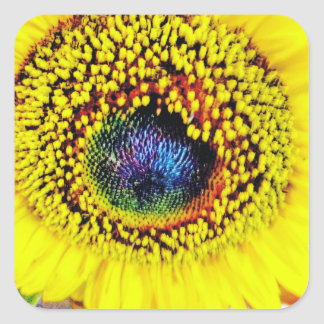 Yellow Closeup Square Sticker