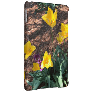 yellow colored tulip type flowers in spring cover for iPad air