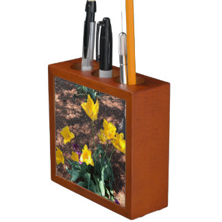 yellow colored tulip type flowers in spring desk organiser