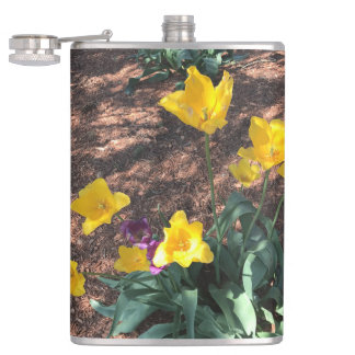 yellow colored tulip type flowers in spring hip flask