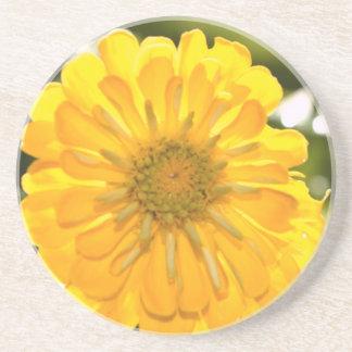 Yellow cosmo coaster