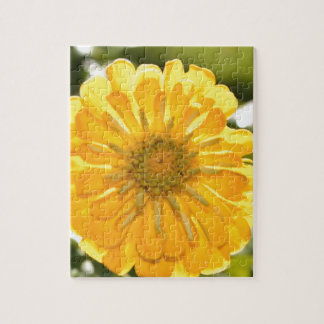 Yellow cosmo jigsaw puzzle