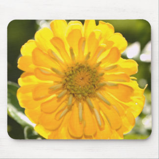 Yellow cosmo mouse pad
