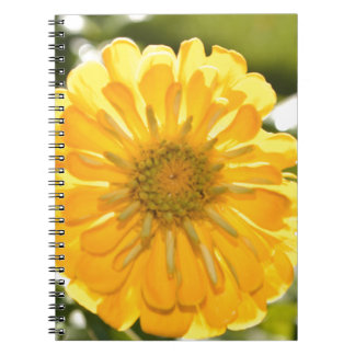 Yellow cosmo notebook