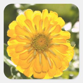 Yellow cosmo square sticker