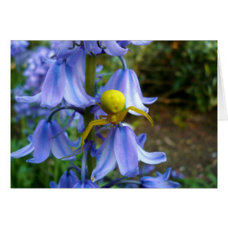 Yellow Crab / Flower Spider Greeting Card